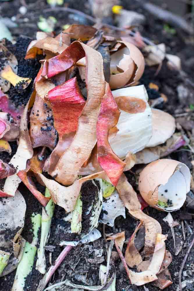 kitchen-compost.jpg