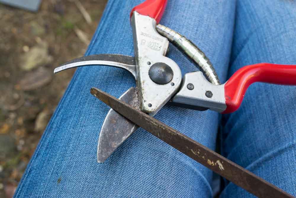 tool-sharpening.jpg