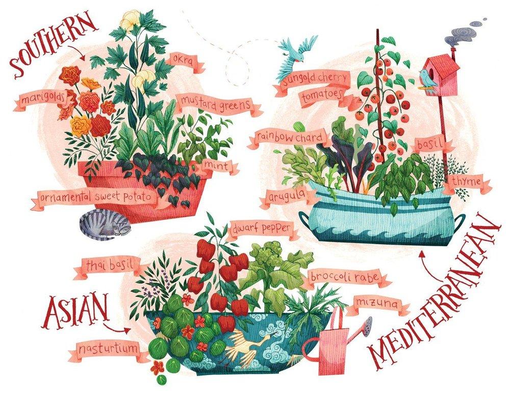 VirginiaLiving-plantsHiRes.jpg