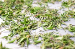 Dried thyme holds it bright color.