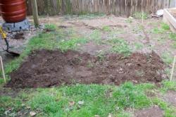 Dark, healthy garden soil.