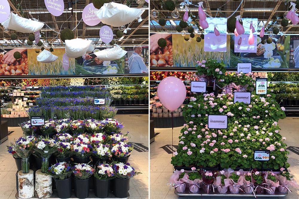 Gör din butik levande - Blommor är en kategori som gjord för kampanjer, eftersom året är fyllt av så många säsonger och skiftande utbud. Vi skiftar stora delar av sortimentet mellan vardag och helg och genomför kompletta kampanjer med nya varor för varje säsong, hela året. Våra uppskattade utemarknader varje vår och höst får din blomsteravdelning att växa utanför butiken och locka fler konsumentgrupper till din butik.