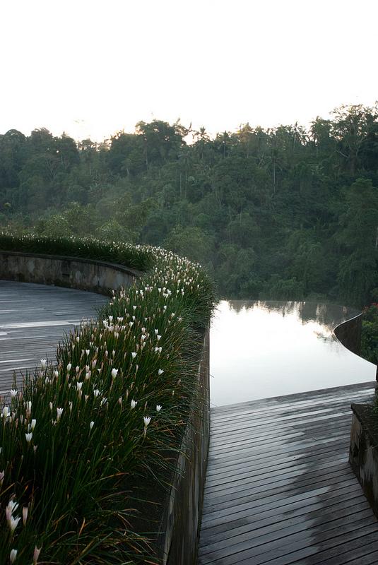infinity pools Ubud Hanging Gardens bali