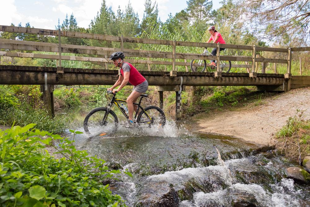 Twin Coast Cycle Trail-181.jpg