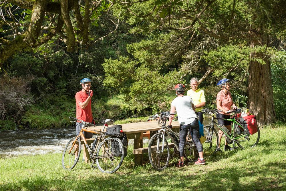 Twin Coast Cycle Trail-66.jpg