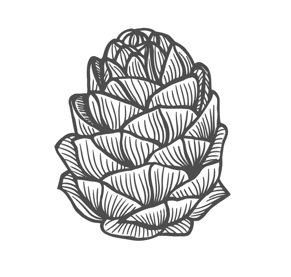 PINECONE COUNSELING, LLC
