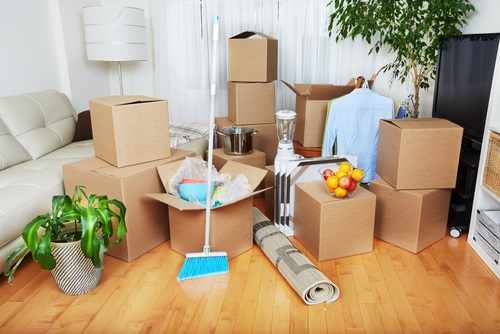 Move-in/Move-out Cleaning Services -