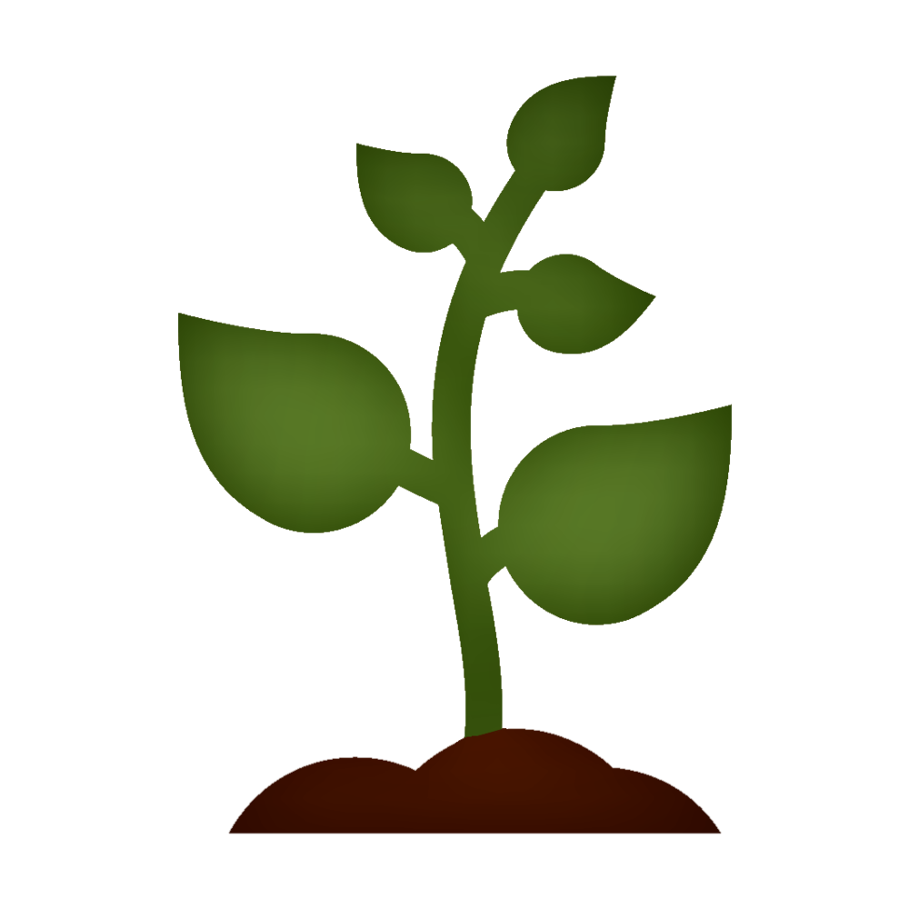 Vibrant Sprout.png