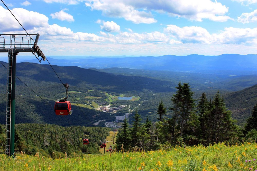 Go to the Top of Mt. Mansfield