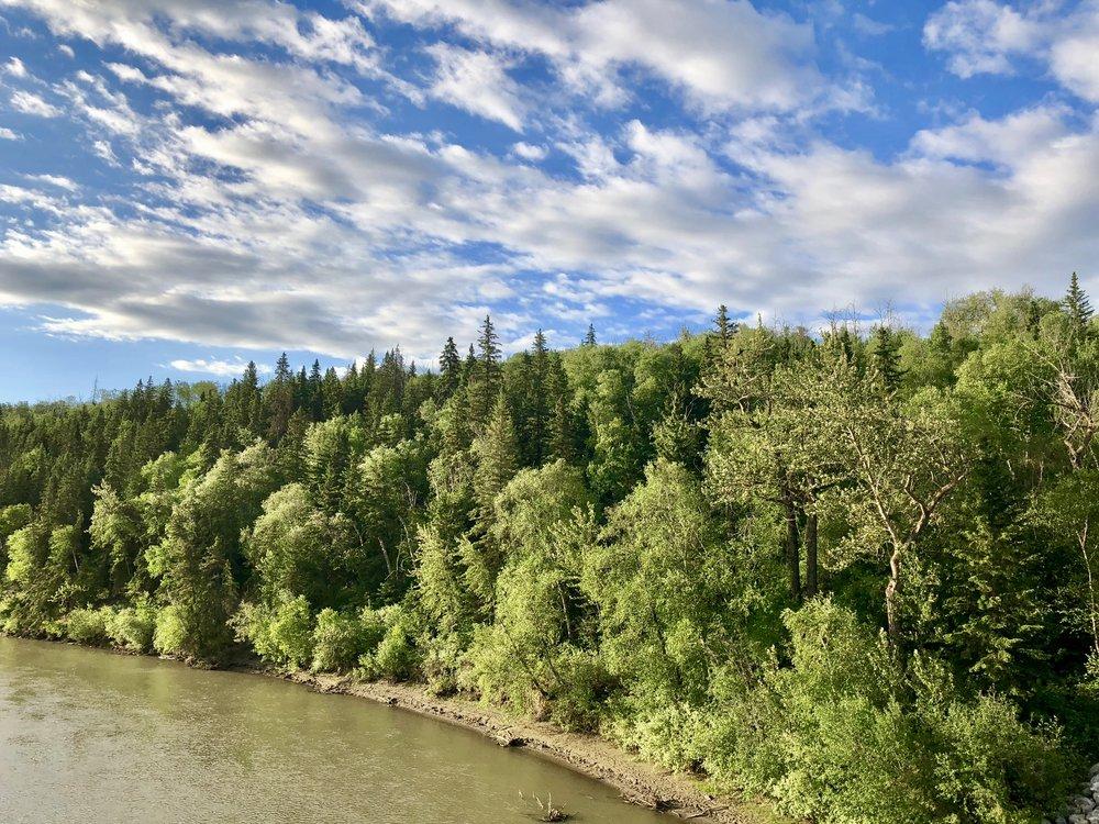 Edmonton River Valley (photo by:  @thelotuspage )