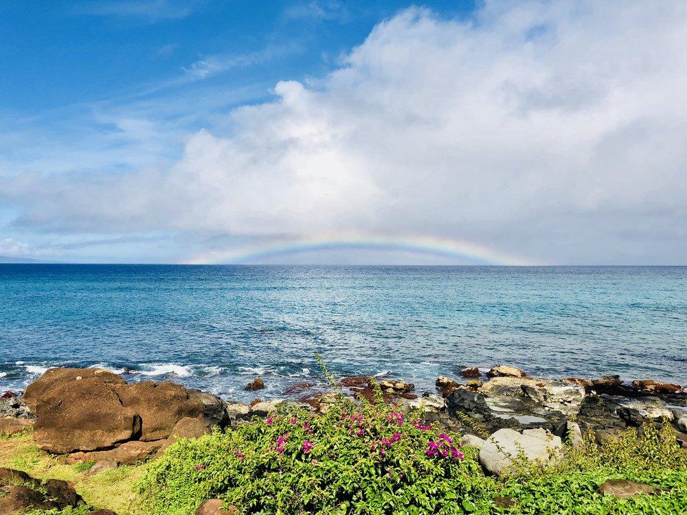 Hawaiian rainbow (photo by: @thelotusproject_yeg)