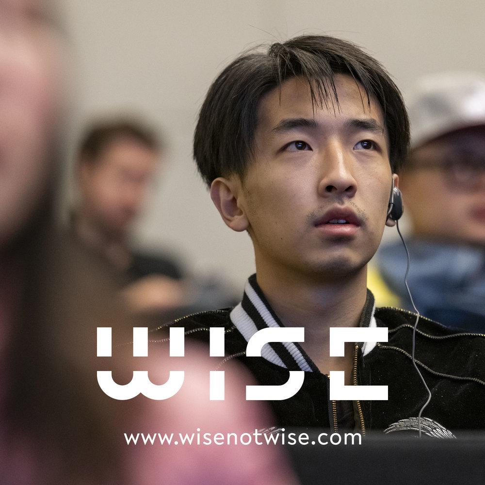 WISE_DOCU_LOGO_2018_23.jpg