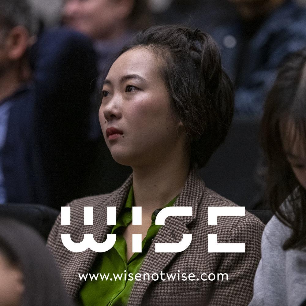 WISE_DOCU_LOGO_2018_29.jpg