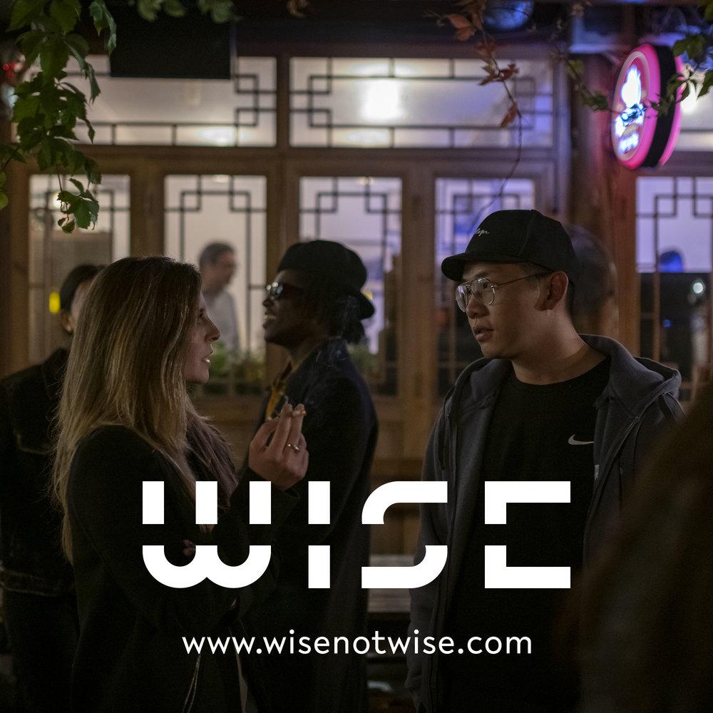 WISE_DOCU_LOGO_2018_55.jpg