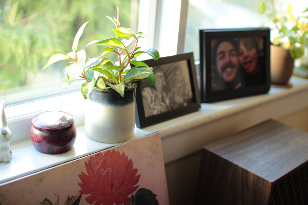 a windowsill with framed photos and plants on it The States of Georgia lifestyle blog Canadian lifestyle blog west coast blo