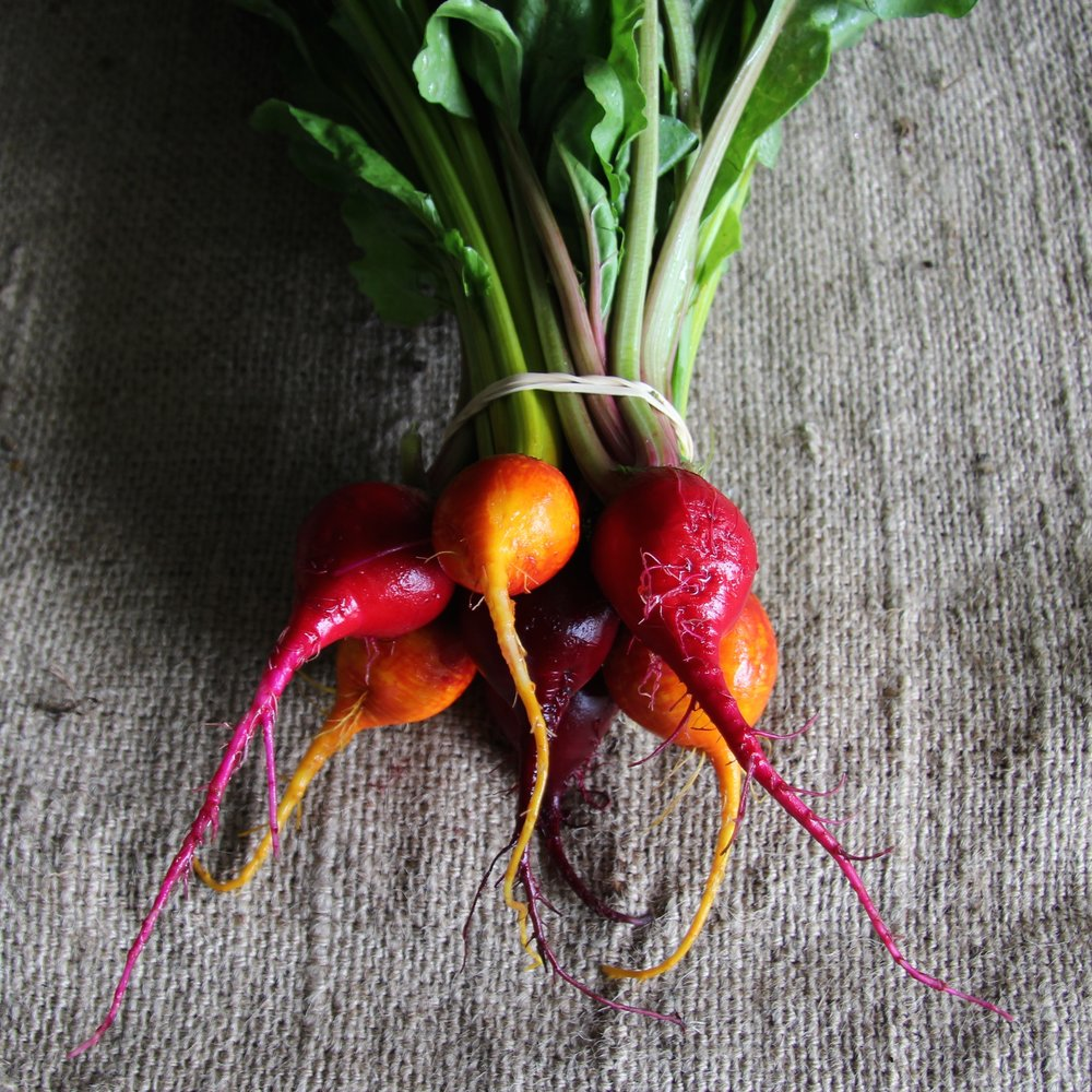 Mixed Beet Bunch .jpg