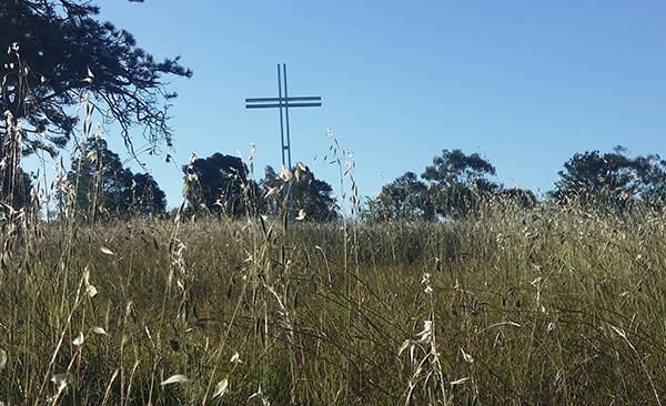 Native Grass Garden, Campfire of the Heart, Canberra ACT (Photo AJS - November 2017)