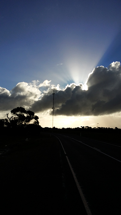 Sunburst, Eyre Peninsula, South Australia  Photo  AJS 2014