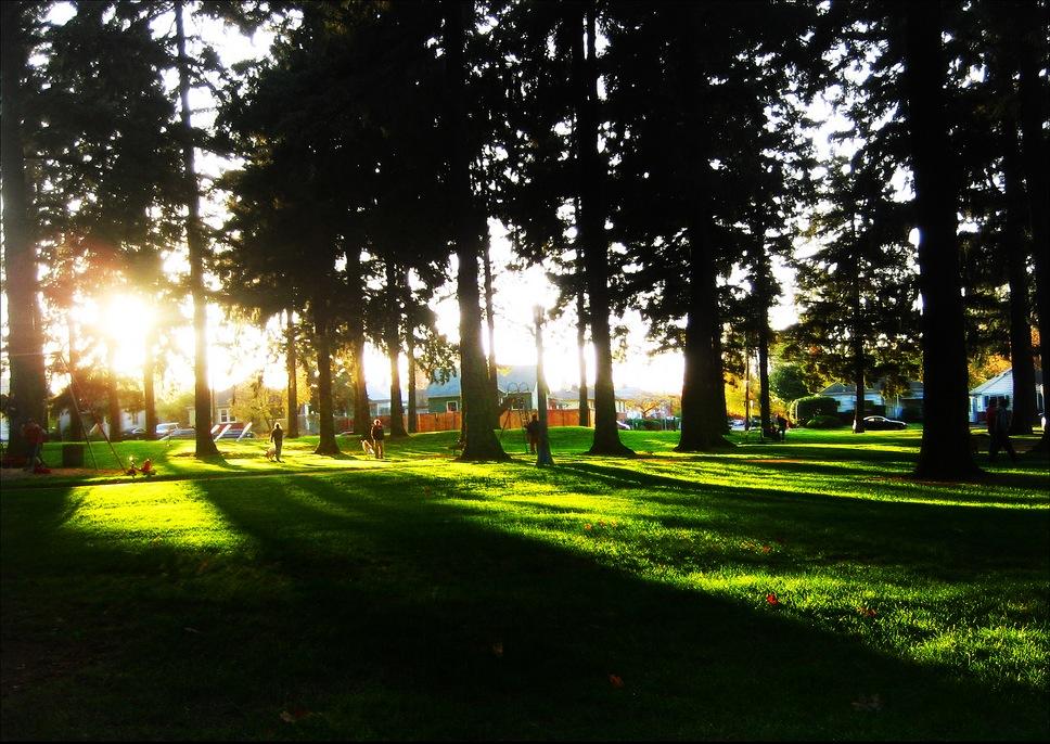 Alberta_Park_(Portland,_Oregon).jpg