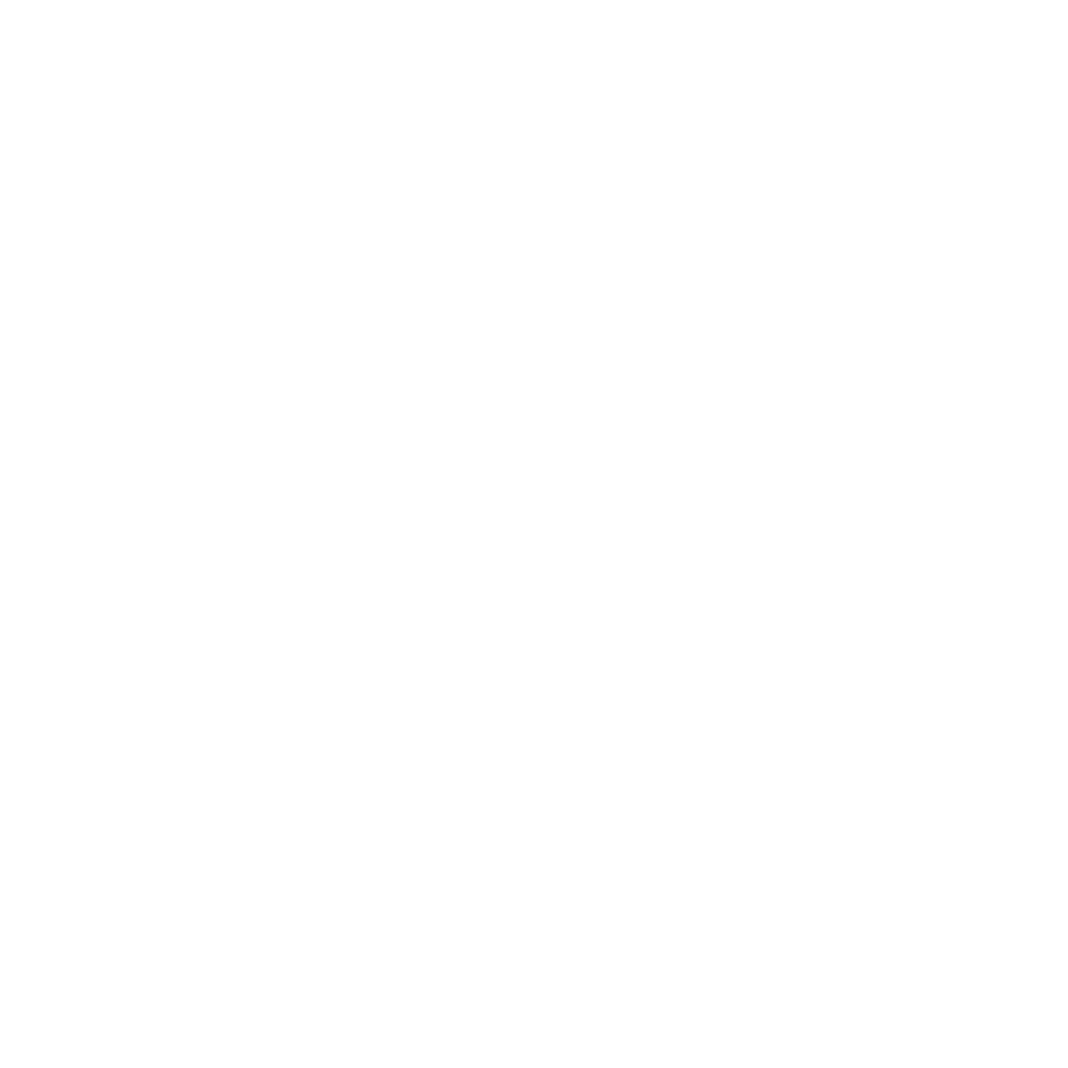 South Asian Film Festival Of America