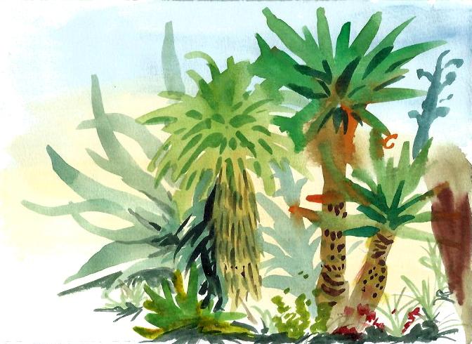CactusGarden.jpg