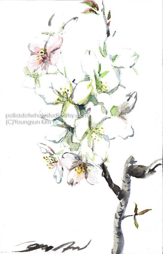 CherryBlossom.jpg