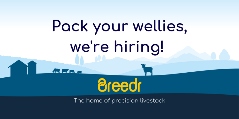 Pack your wellies, we're hiring!.png