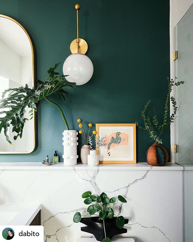 So much to love about this bathroom remodel by @dabito 🌿🤸🏻♀️ Check his feed for the before photos! We spy some @target vases, billy balls, and eucalyptus branches! . Fun name: the plant in the black vase is a Chinese Money Plant 🤑 The leaves are coin shaped #larolf #learning #greenlife