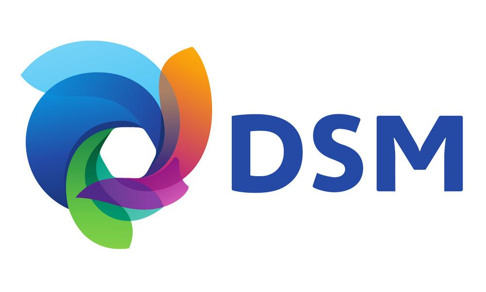 sponsor_dsm.jpg