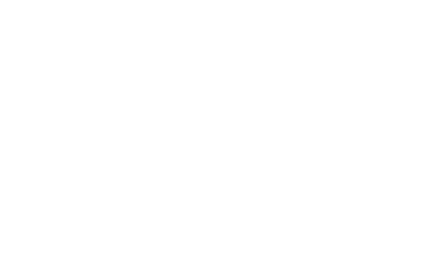 Survivor Customs | Dirt Track & Custom Motorcycles