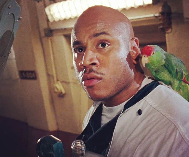 "Clarissa's #31daysofhalloween #90shorroredition... Day 9: The shit-tastic Deep Blue Sea. Here's LL ""my head is like a shark fin"" Cool J with his ill-fated best mate, ""bird""."