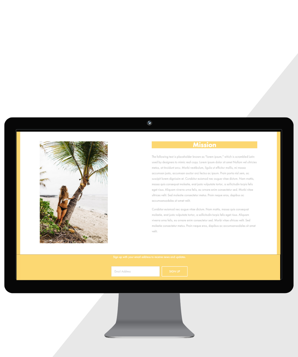 Key features on Wild + Wave's homepage: bold colors and headings + prominent lead capture form
