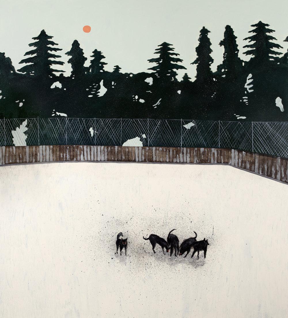 The burning plain, 190 x 170 cm, Oil on canvas, 2018.jpg
