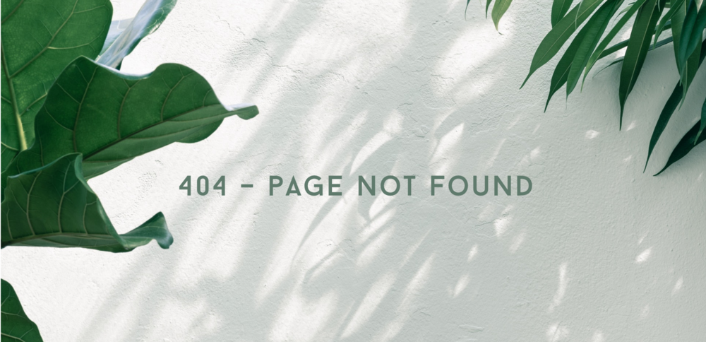 404 page.png