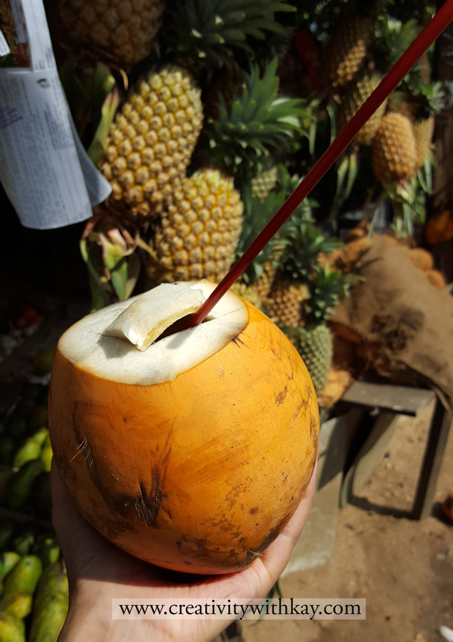 qatar-travel-blogger-khansa-coconut-water-srilanka.jpg