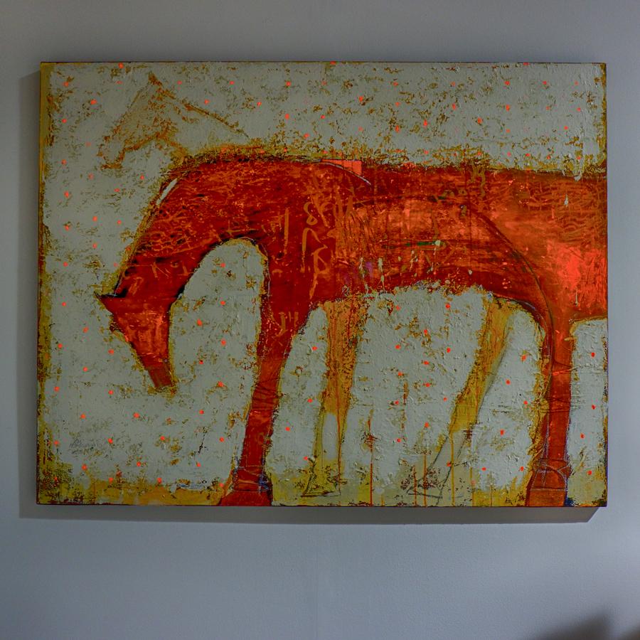 START-Doha-NYtimes-AliHassan-desert-horse.jpg