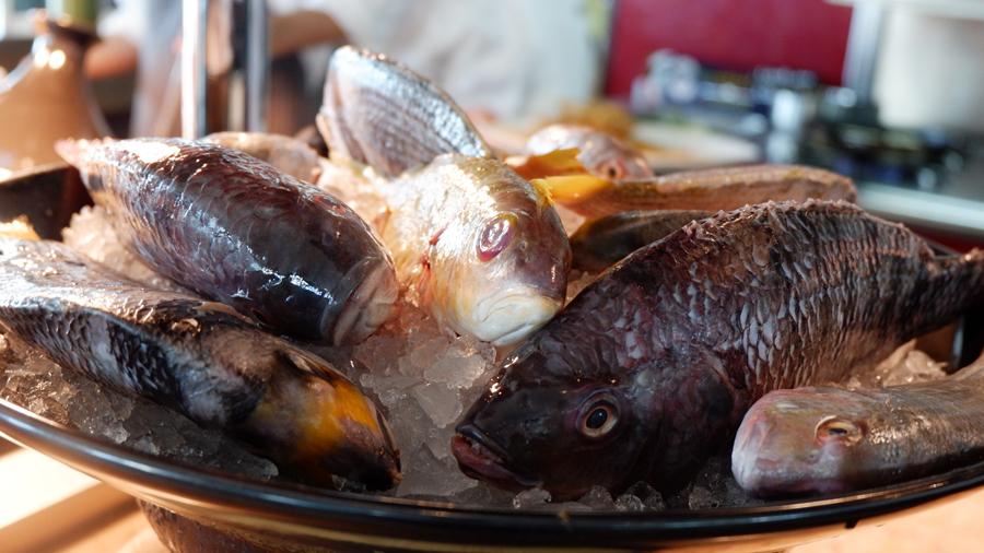 Friday-Brunch-CityCentre-Rotana-fresh-seafood.jpg