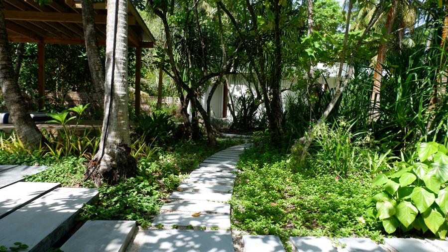 Dhigali_Maldives_Greenery2.jpg