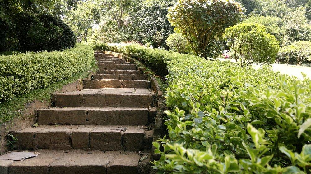 peradeniya-royal-botanical-garden-kandy-creativitywithkay.jpg