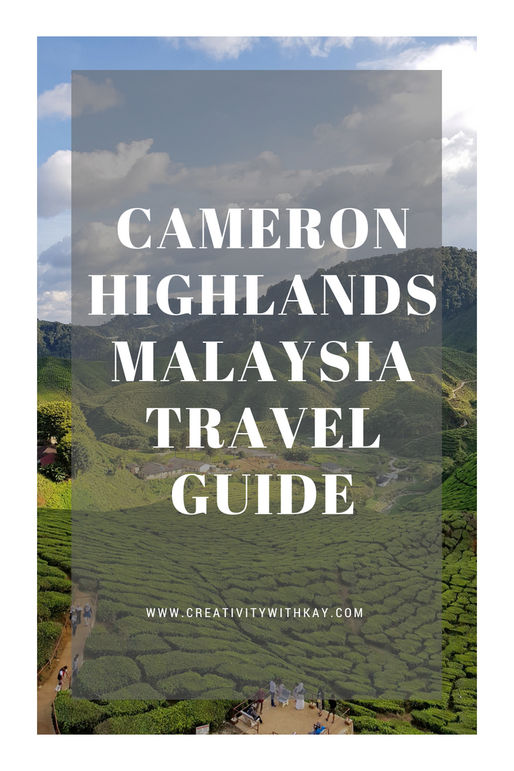 cameron-highlands-malaysia-travel-guide.jpg