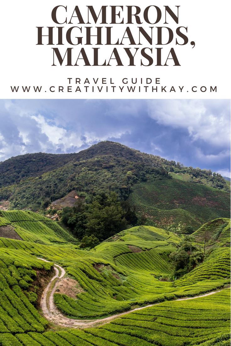 cameron-highlands-malaysia-travel-guide-qatar.jpg