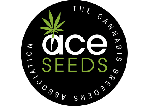 ace_seeds_2.png
