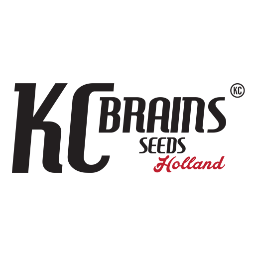 cropped-KCBrains-iOS-badge.png