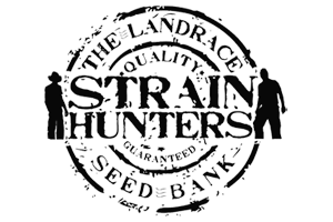 strain_hunters-square-300x200.png