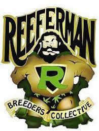 Reeferman Seeds.jpg