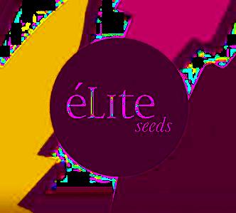 Elite+Seeds.png