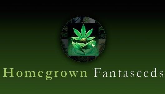 fanta-seeds_brand_full.jpg