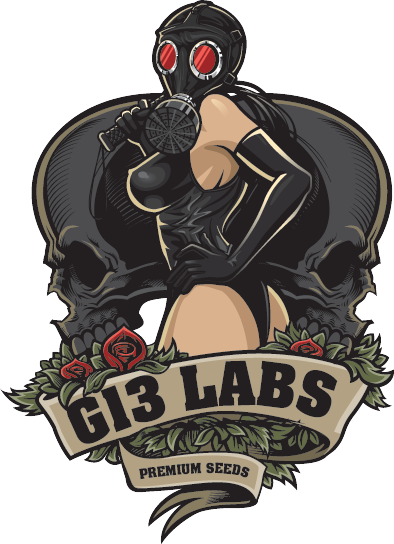 g13labs-lady.png