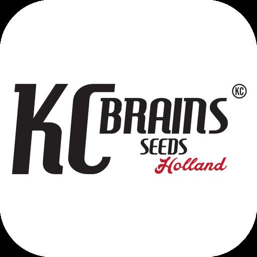 cropped-KCBrains-iOS-badge.png