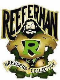Reeferman+Seeds.jpg